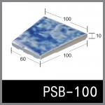 PSB-100